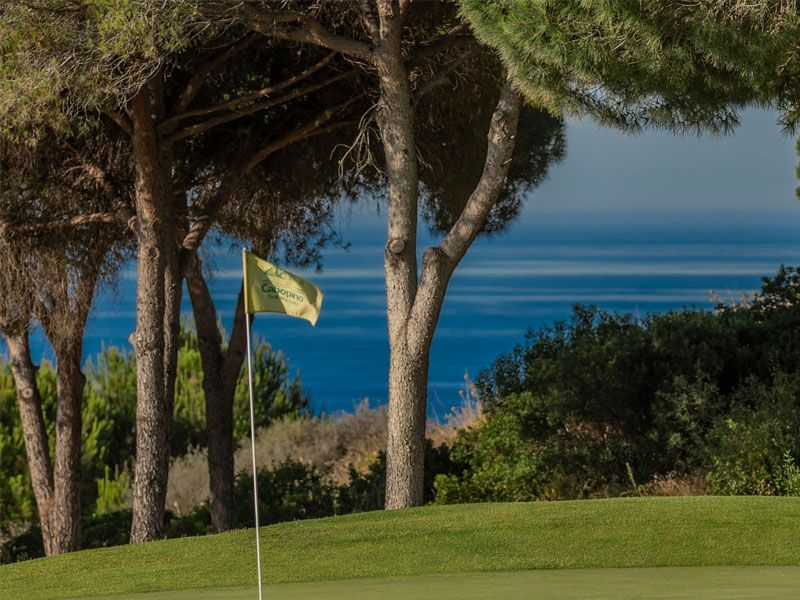 Tee Time in Marbella: all you need to know
